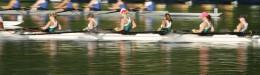 Rowing regatta on Grand River