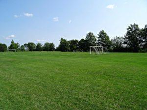 Cosmo Soccer Field