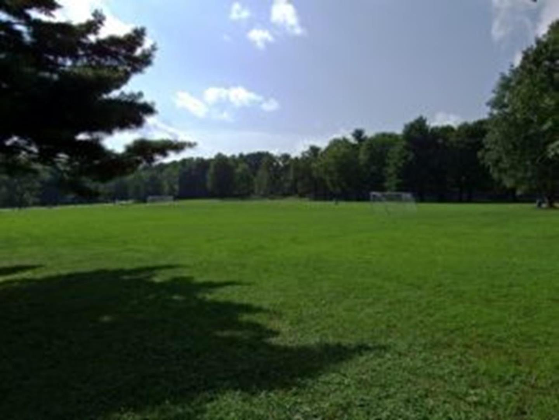 Curtis Memorial Park