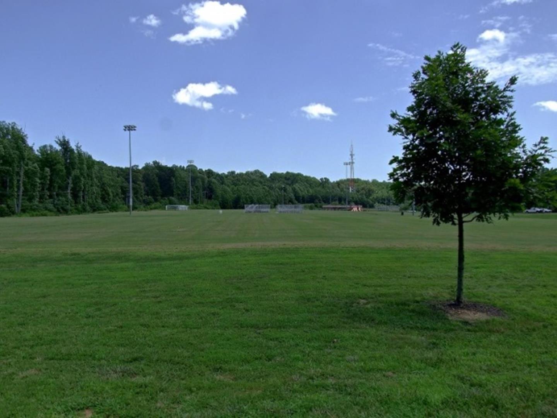 Duff Mcduff Green Dog Park