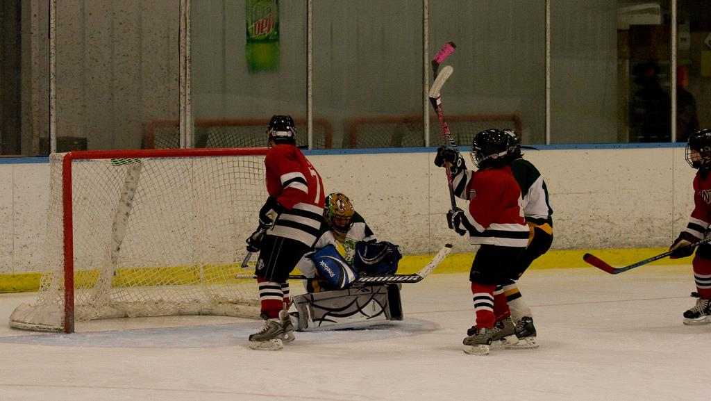 OneHockey Action Coming to DuPage County