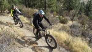Fat bikes 3