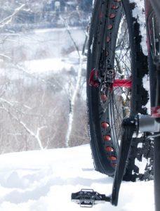 Fat bikes 2