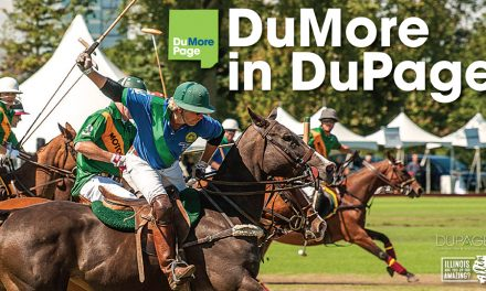 DuPage County creates sports commission