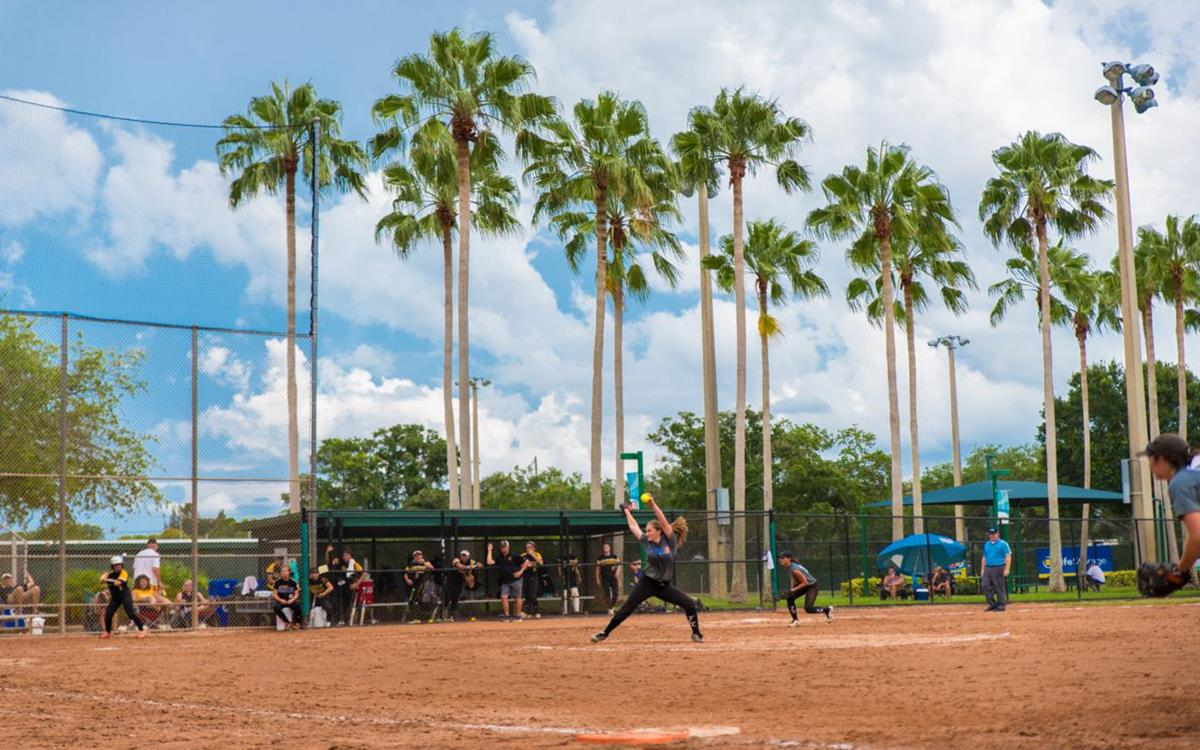 Clear the Way for Your Next Sports Event in St. Petersburg-Clearwater, FL