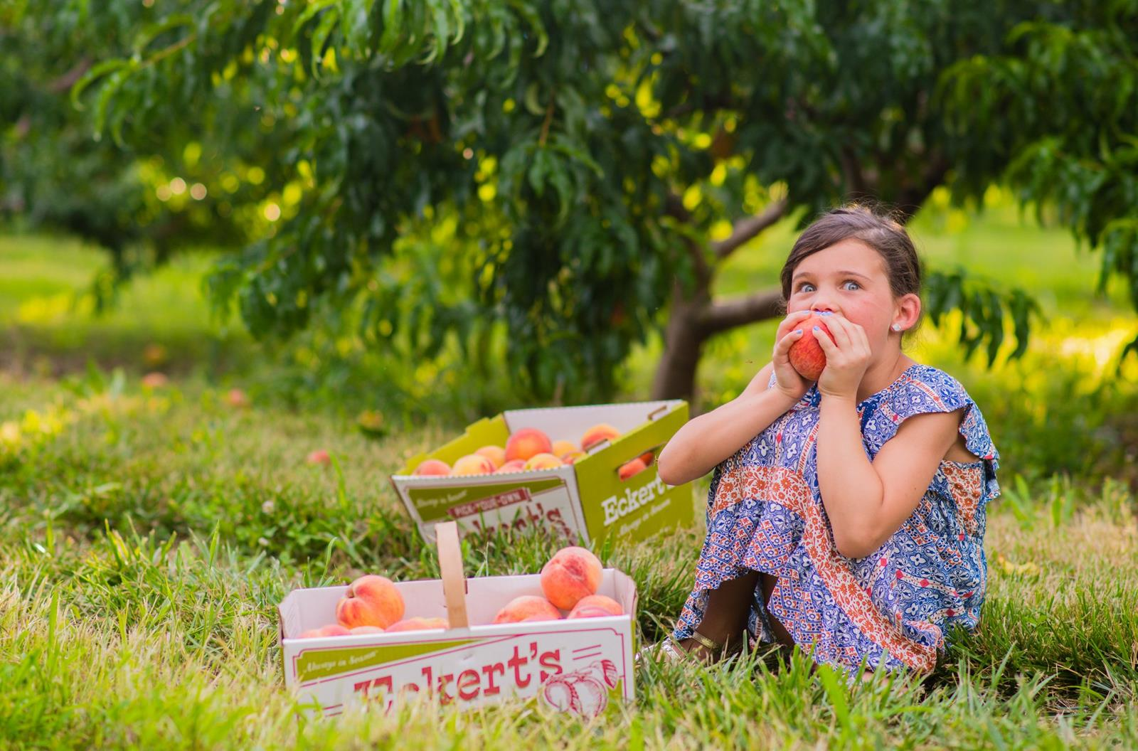 Eckert's girl with peaches